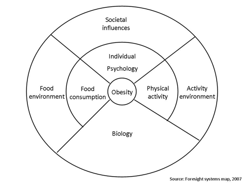 Foresight obesity system map ccuart Choice Image